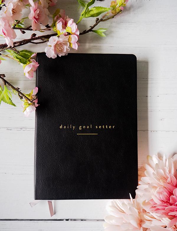 Mal Paper Daily Goal Setter planner image