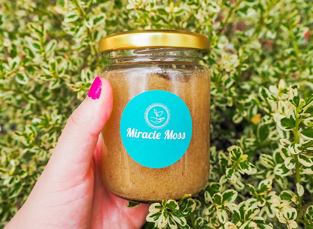 Miracle Moss Humming Honey image