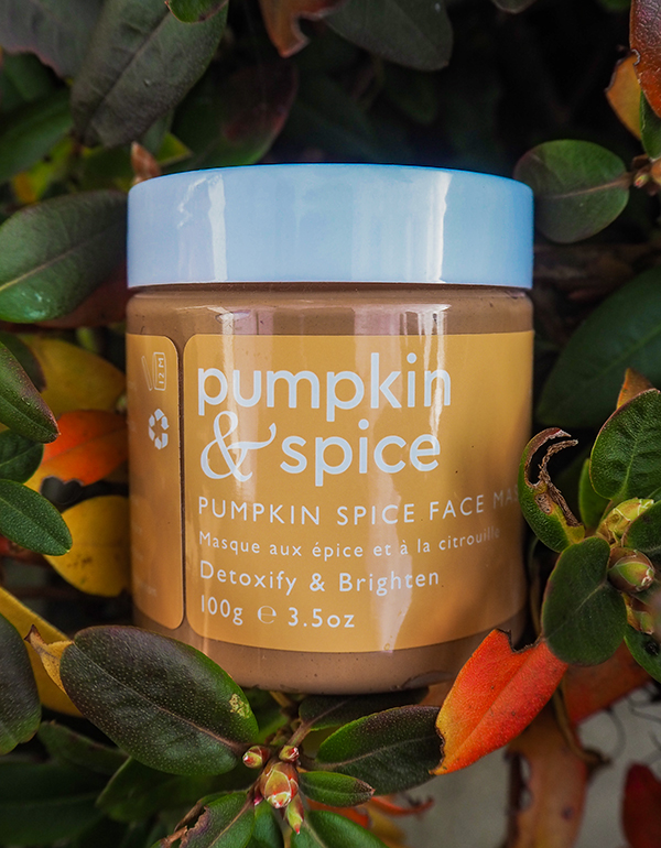 Pumpkin & Spice Clay Face Mask image