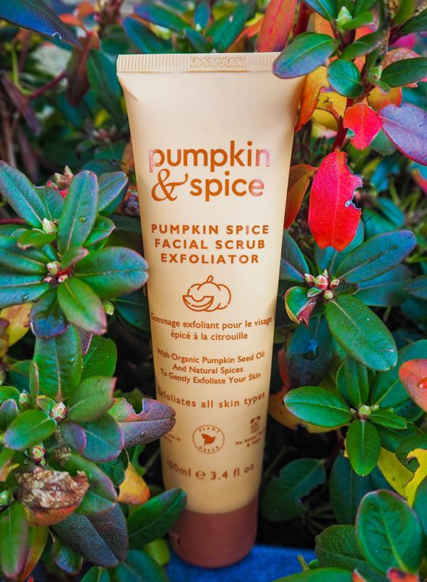 Pumpkin & Spice Facial Scrub Exfoliator image